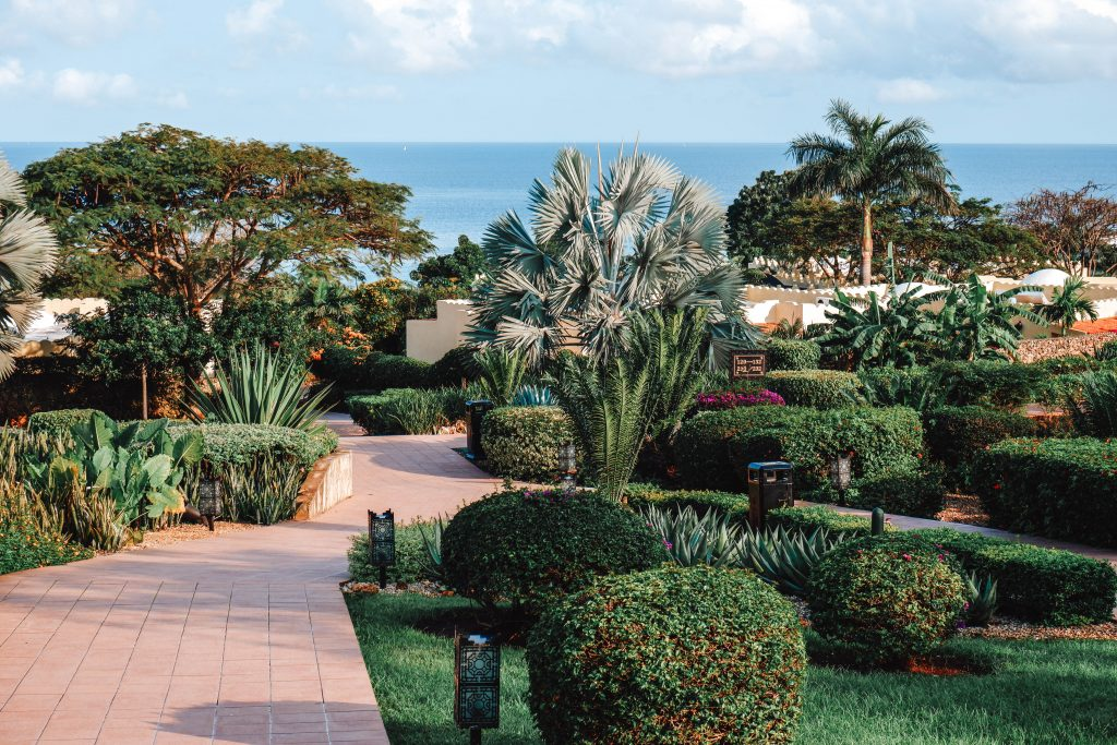 Gardens Riu Palace Zanzibar